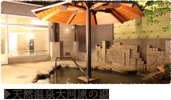 天然温泉大河原の湯